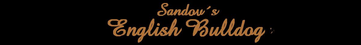 Welcome To Sandov's