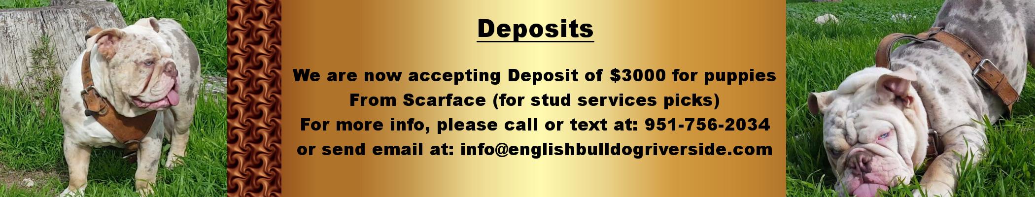 Deposit_Scarface