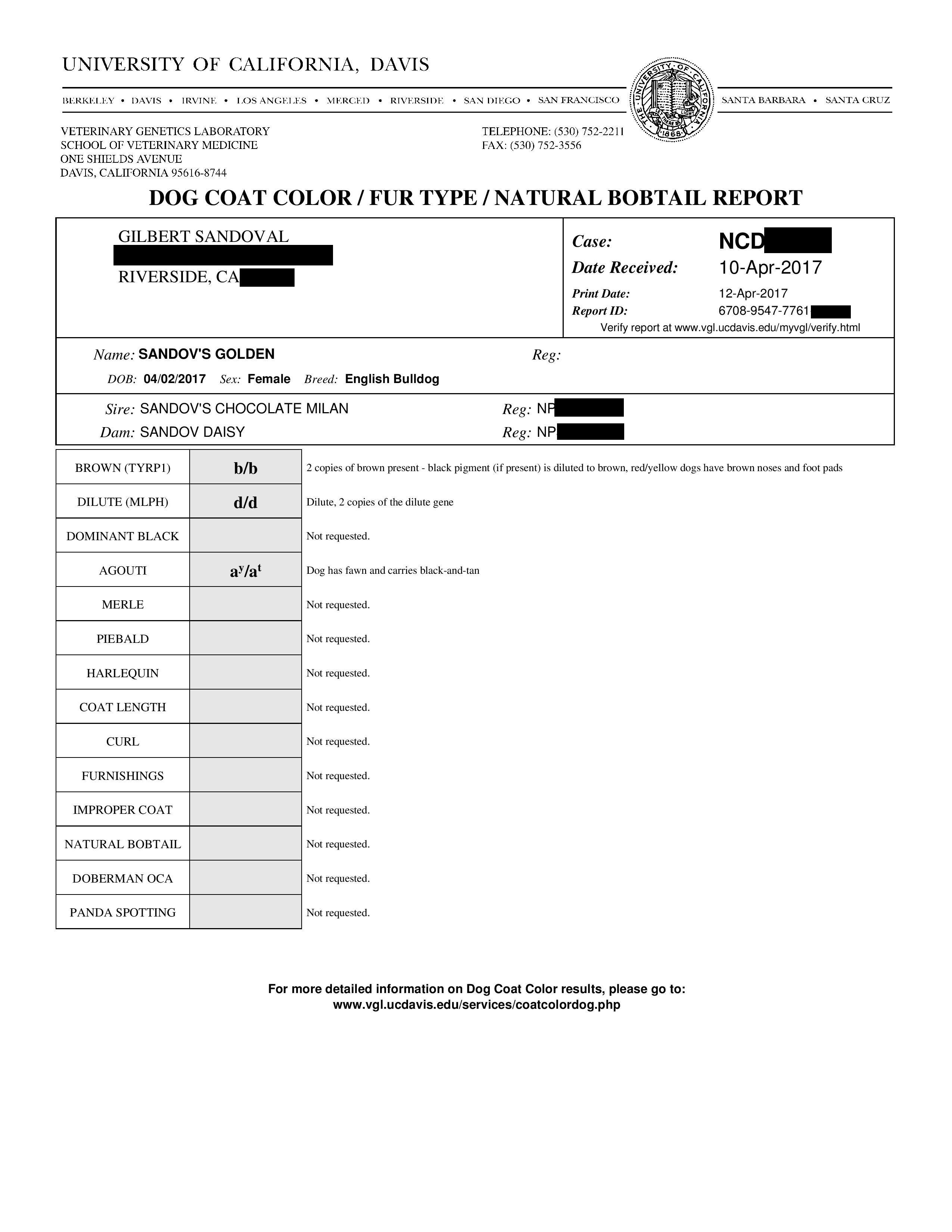Test_DNA_Female4_041217
