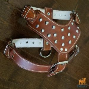 Dido Studded Spiked Leather Harness for English Bulldogs (Brown)